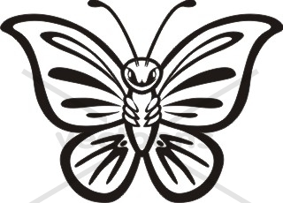 Butterfly Clip Art Outline on birthday wishes for boss