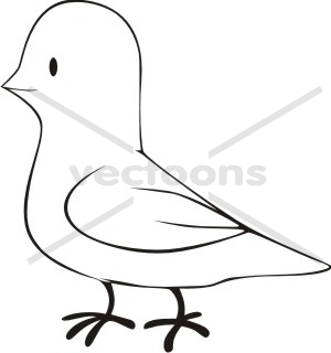 cartoon dove sketch style