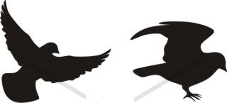 Aninimal Book: Flying Sparrow Silhouette - Bird - Animals - Buy Clip Art ...